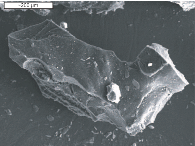 rubber-particles-as-observed-with-a-sem